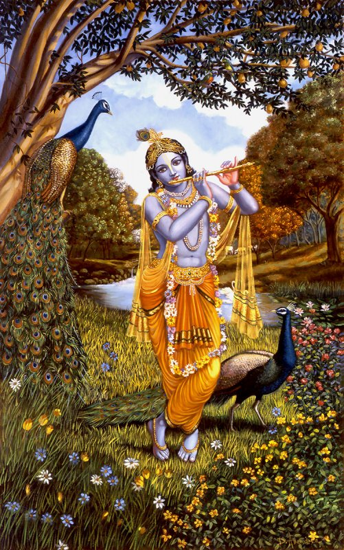 God Shri krishna Picture with birds